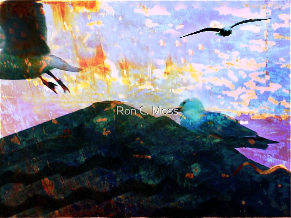 City Gulls by Ron C. Moss