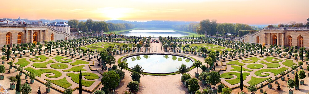 The Palace of Versailles by Anthony Caffery