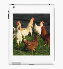 Poultry iPad Case/Skin