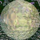 Captured in a Bubble by Pat Moore