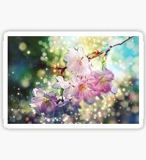 Cherry, Apple Blossoms - Spring, Summer - Bokeh / Apfelblüte, Kirschblüte Sticker