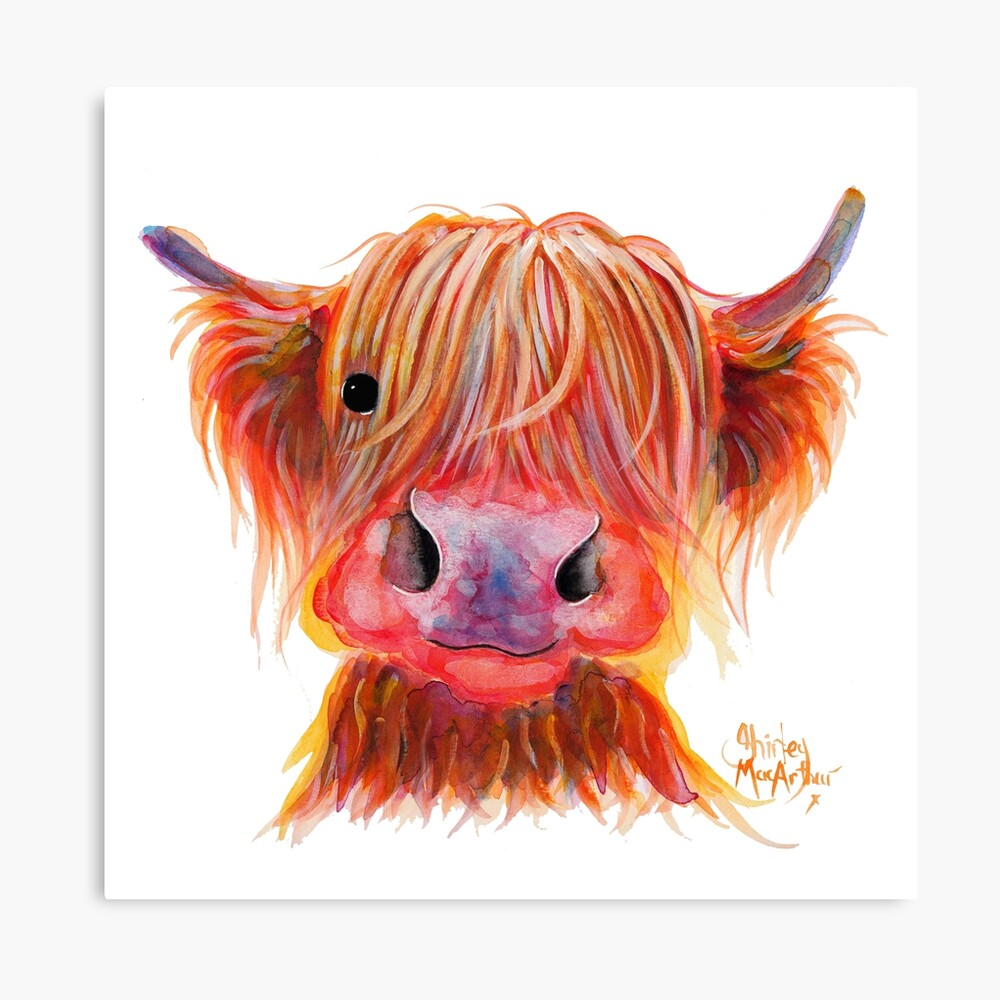 Scottish Highland Hairy Cow ' CHILLI CHOPS ' by Shirley MacArthur Canvas Print