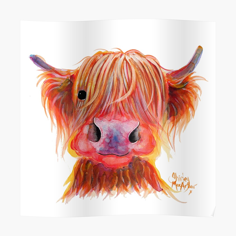 Scottish Highland Hairy Cow ' CHILLI CHOPS ' by Shirley MacArthur Poster