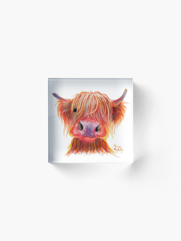 Alternate view of Scottish Highland Hairy Cow ' CHILLI CHOPS ' by Shirley MacArthur Acrylic Block