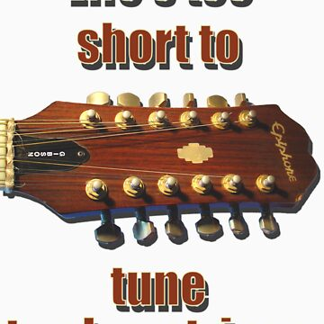 Life's too short to tune 12-strings by blackwatch