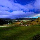 The Inca-Canari Ruins At Ingapirca III by Al Bourassa