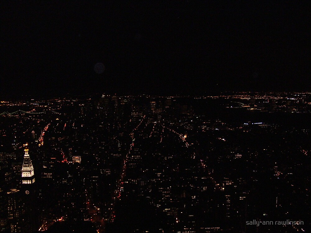 empire state building view at night by sally-ann rawlinson