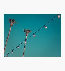 Tall Palm Trees in Palm Springs California With String of Lights  Photographic Print