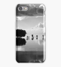 Grantville Mangrove Trees iPhone Case/Skin