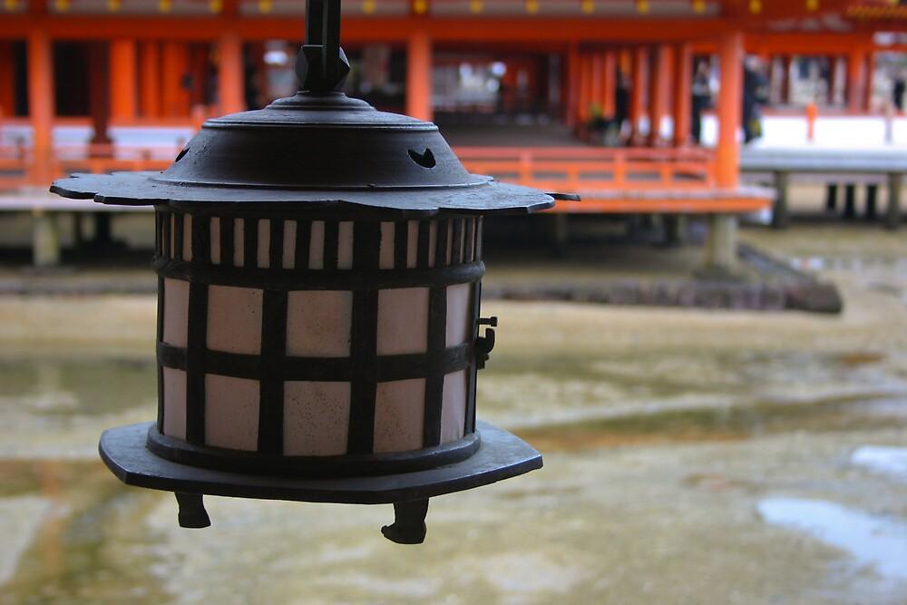 lantern in daylight! by Gail Davison