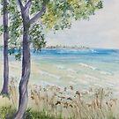 Waves of the Lake by Carolyn Bishop