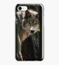Wolf In Forest iPhone Case/Skin