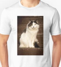 White and grey fluffy cat sitting on brown stairs T-Shirt