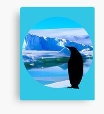 Lonely penguin Canvas Print