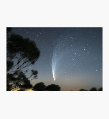 Comet McNaught from Mt Macedon Photographic Print