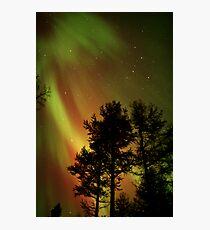 Aurora Borealis - The Northern Lights Photographic Print