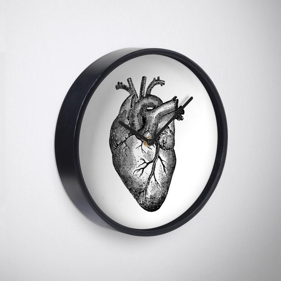 Famoso Diagrama De Corazón Etiquetado Foto - Anatomía de Las ...