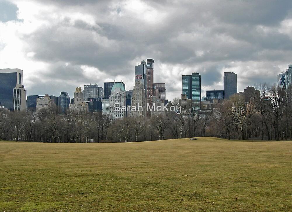Central Park Views 2 by Sarah McKoy