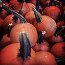 PumpkinsPumpkins by AndreaBelanger