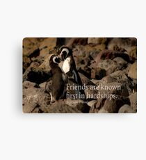 Friends are hard Canvas Print