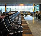 Early Flight -- Tampa Gate #9 by T.J. Martin
