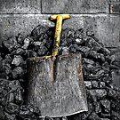 Shovel the carbon by Simon Duckworth