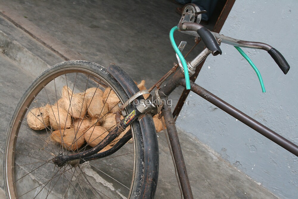 old bike and coconuts by roseking