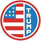 Trump American flag by CentipedeNation