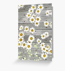 Daisies Scattered on a Wooden Floor Greeting Card
