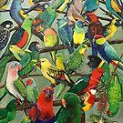 Australian Parakeets by Skye Elizabeth  Tranter