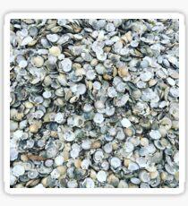 Scallop shell Sticker