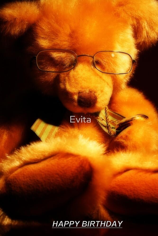 Teddy Bear by Evita