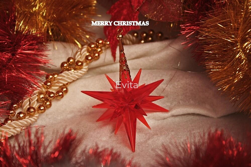 Merry Christmas #4 by Evita
