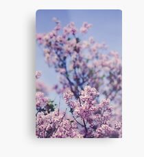 She Was an Introvert With a Beautiful Universe Within Metal Print