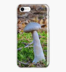 Aniseed Funnel ? iPhone Case/Skin