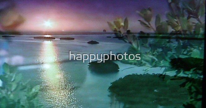 Florida sunset by happyphotos