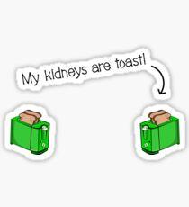 Diabetes Kidney Disease Diabetic Funny  Sticker