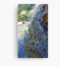 Cool Pool on a Warm Day Canvas Print