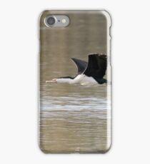 Pied Cormorant  (0019) iPhone Case/Skin