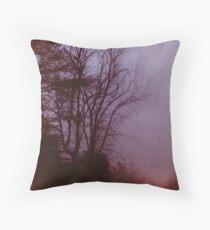 """""""Before Dawn"""" frame 01 Throw Pillow"""