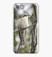 Black-eared Cuckoo  (310) iPhone Case/Skin