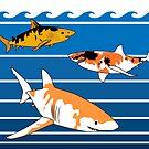Koi sharks by jcmeyer