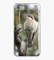 Black-eared Cuckoo  (325) iPhone Case/Skin