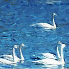 Flock of Trumpeter Swans Abstract Impressionism by pjwuebker