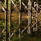 Fluid Reflections of Horton Bay Dock by toby snelgrove  IPA