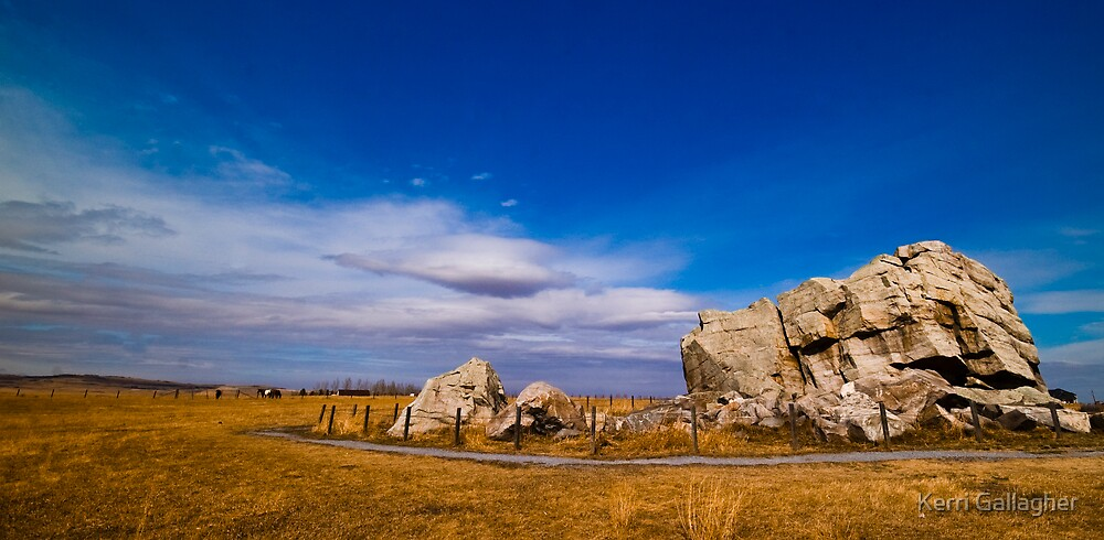 Glacial Erratic aka Big Rock by Kerri Gallagher
