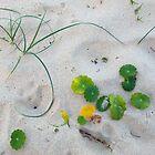 Beach Art by Kitsmumma