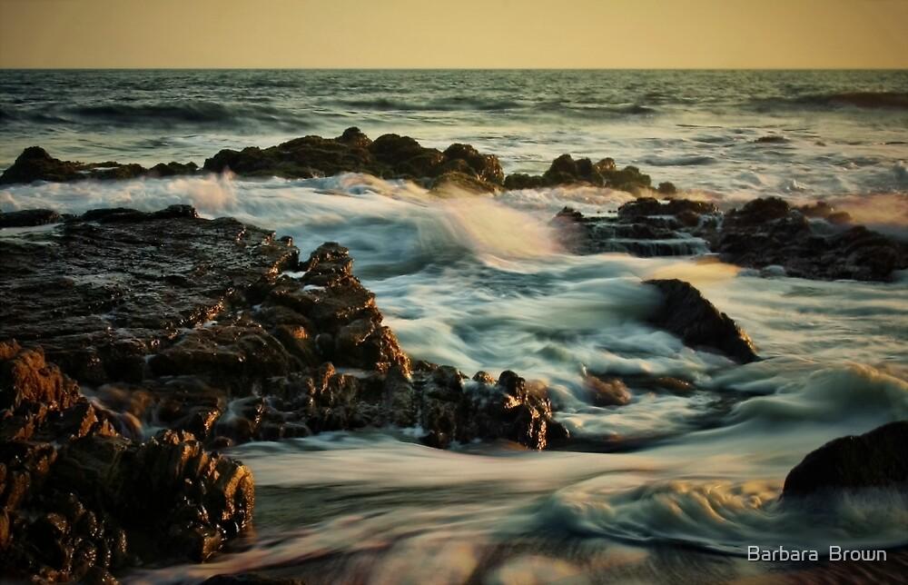 Seafoam by Barbara  Brown