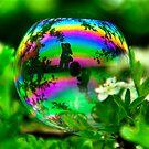 She's Like a Rainbow by Tony Fallon