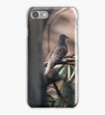 Peaceful Doves  (2128) iPhone Case/Skin